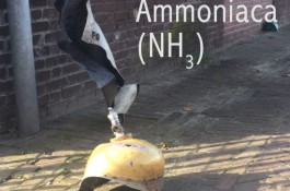 Bombola di Ammoniaca esplode presso una fabbrica GEA in Olanda